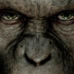 L'informazione deviata e la centesima scimmia